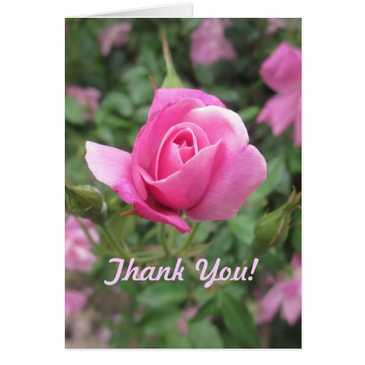 Thank You Note 1 Cards