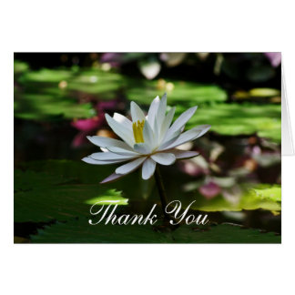 Thank you Note Note Card