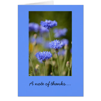 Thank You Note Card with Blue Bachelor Buttons