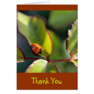Thank You Notecard with Ladybug Design Greeting Card