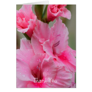 Thank You Notecard with Pink Gladiolas
