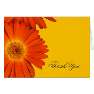 thank you orange gerbera daisy flowers card