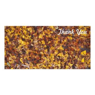 Thank You photo card - Leaf litter