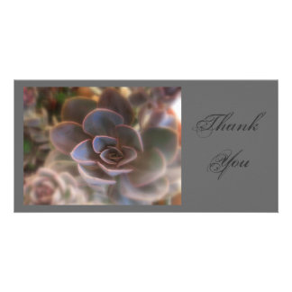 Thank  You, Pink Succulent Picture Card