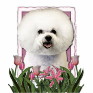 Thank You - Pink Tulips - Bichon Frise Acrylic Cut Out