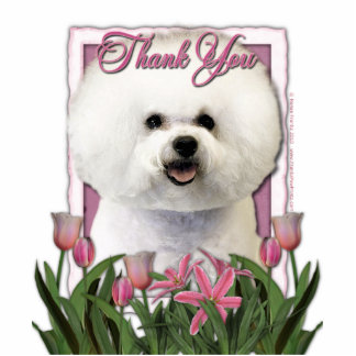 Thank You - Pink Tulips - Bichon Frise Photo Sculptures