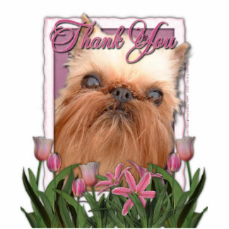 Thank You - Pink Tulips - Brussels Griffon Photo Cut Outs
