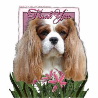 Thank You - Pink Tulips - Cavalier - Blenheim Photo Cutout