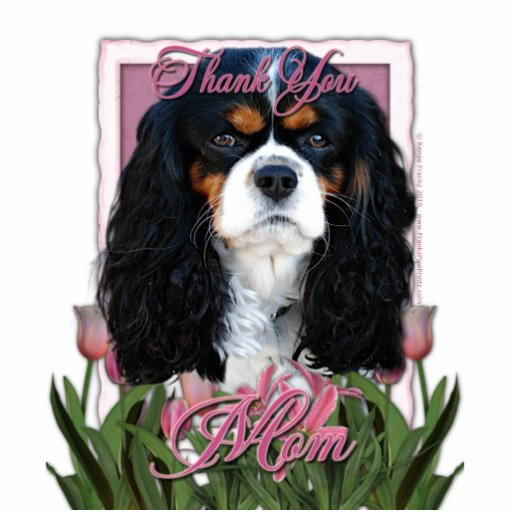 Thank You - Pink Tulips - Cavalier - Tri-Color Photo Cutouts