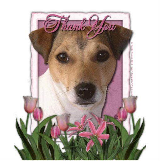 Thank You - Pink Tulips - Jack Russell Photo Cut Out