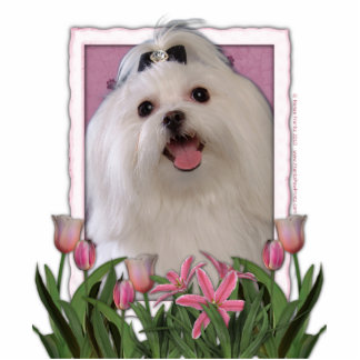 Thank You - Pink Tulips - Maltese Photo Cutouts