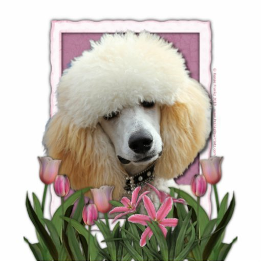 Thank You - Pink Tulips - Poodle - Apricot Cut Outs