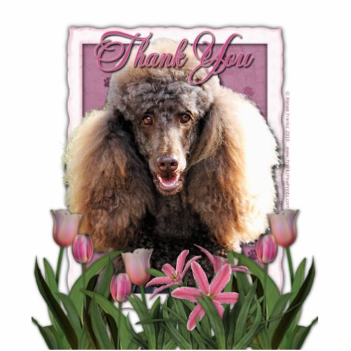 Thank You - Pink Tulips - Poodle - Chocolate Cut Out