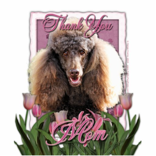 Thank You - Pink Tulips - Poodle - Chocolate Photo Sculpture
