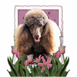 Thank You - Pink Tulips - Poodle - Chocolate Photo Cut Outs