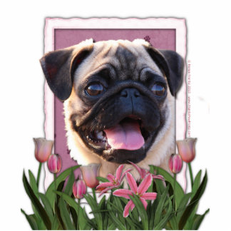 Thank You - Pink Tulips - Pug Photo Cut Out