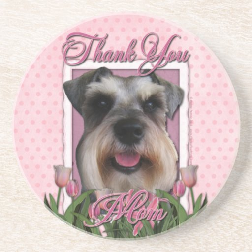 Thank You - Pink Tulips - Schnauzer Beverage Coasters