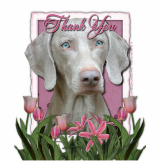 Thank You - Pink Tulips - Weimeraner - Blue Eyes Standing Photo Sculpture