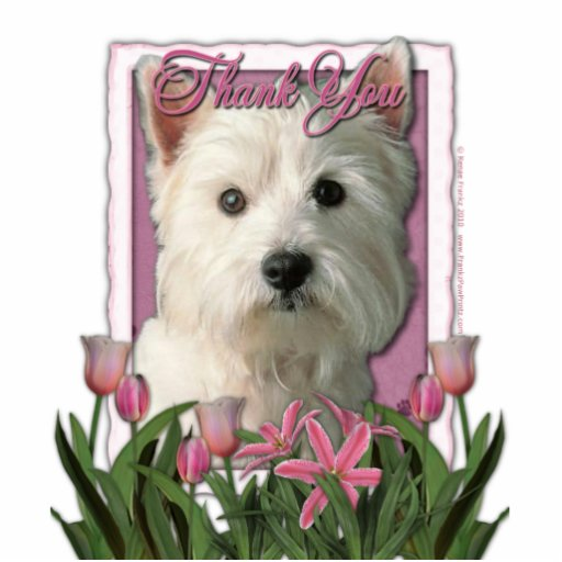 Thank You - Pink Tulips - West Highland Terrier Photo Sculpture