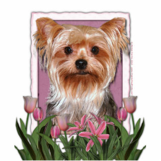 Thank You - Pink Tulips - Yorkshire Terrier Photo Sculptures