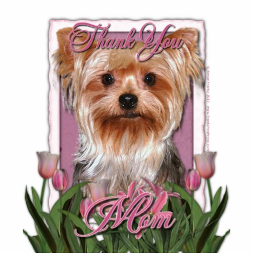 Thank You - Pink Tulips - Yorkshire Terrier Photo Cutouts