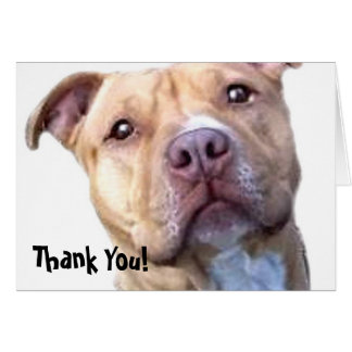 Thank You Pitbull greeting card