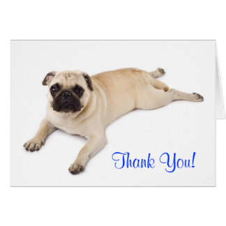 Thank You Pug Blank Note Card