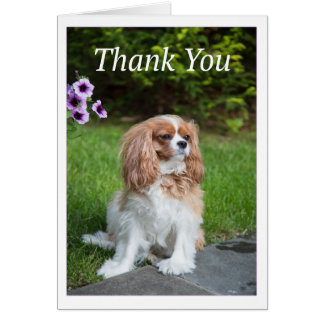 Thank You Purple Flowers Cavalier King Charles Card