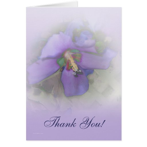 Thank You Purple Hibiscus Greeting Cards