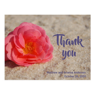 Thank You Rose on Sand Postcard