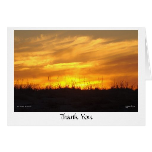 Thank You - scusset beach Greeting Cards
