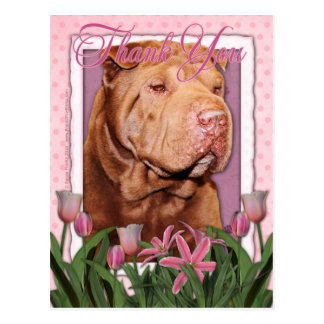 Thank You - Shar Pei - Lucky Postcard