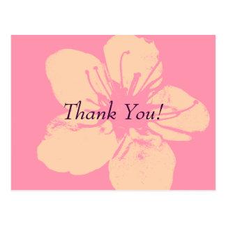 Thank You - Simple Apple Blossom Postcard