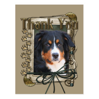 Thank You - Stone Paws - Bernese Mountain Dog Postcard