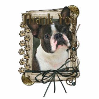 Thank You - Stone Paws - Boston Terrier Photo Sculpture