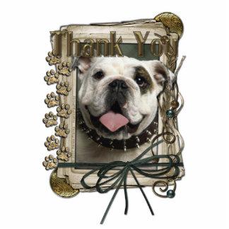 Thank You - Stone Paws - Bulldog Photo Cutout