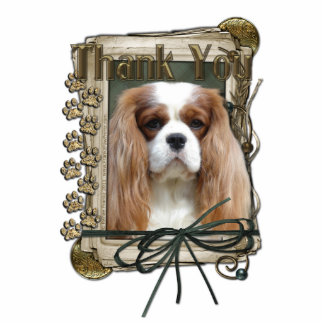 Thank You - Stone Paws - Cavalier Standing Photo Sculpture