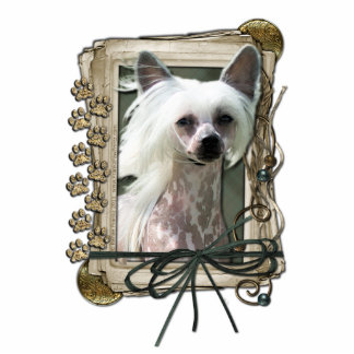 Thank You - Stone Paws - Chinese Crested - Kahlo Acrylic Cut Out