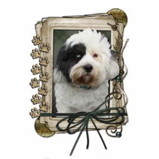 Thank You - Stone Paws - Tibetan Terrier Cut Out