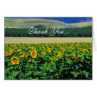 Thank you...Sunflowers Card