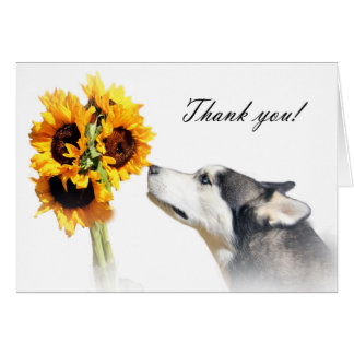 Thank You Veterinarian Card with Husky and Flowers