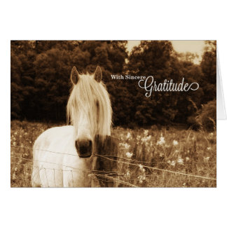 Thank You Western Sepia White Horse Blank Card