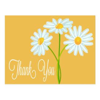 Thank You White Daisy Flower Orange Post Card