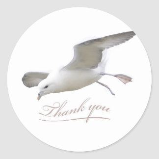 Thank you WIngs Seagull Classic Round Sticker