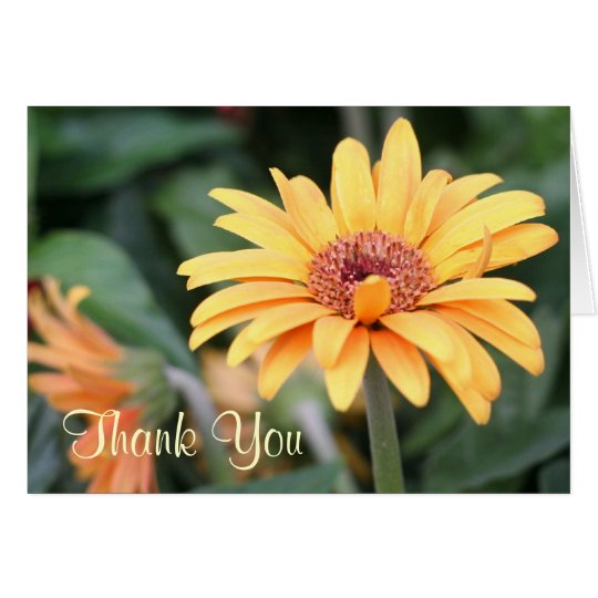 Thank You Yellow Spring Flower Photography Card