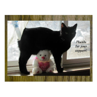 Thanks for your support black cat and teddy bear postcard