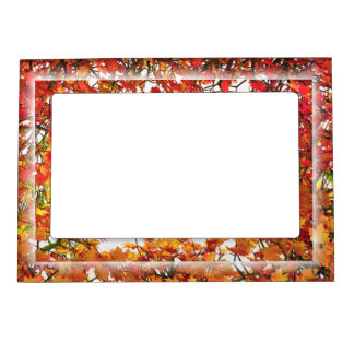 Thanksgiving Autumn Maple Leaves Magnetic Picture Frame