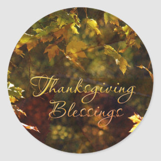 Thanksgiving Blessings Stickers