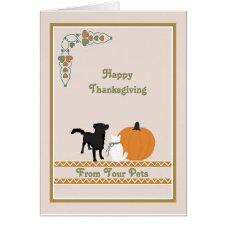 Thanksgiving Card from your Pets