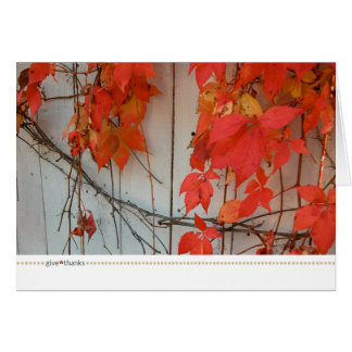 thanksgiving card_red story card